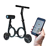 Smacircle E-mobility, Folding Electric mobility with Lightweight Carbon Fiber Frame, 36V Lithium-ion Battery, 12 Mile Range, USB Charger, App control, ideal for Urban Riding and Commuting - Black Blue