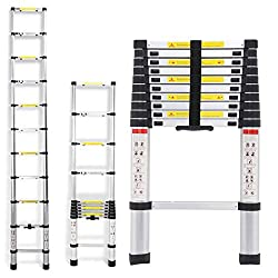 Best extension ladders for money