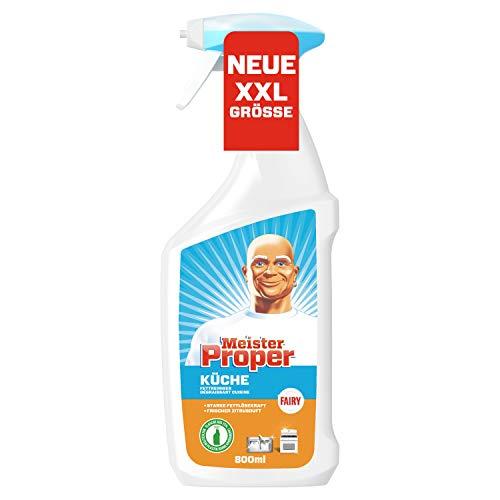 Meister Proper Küchenspray (800 ml) Fettreiniger, wirkungsvolle Reinigung und Fettlösekraft