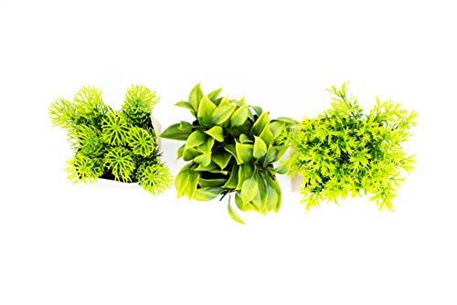 HEITMANN DECO - Kunstpflanze in Papiertüte, 3er Set, grün/braun - Ganzjahresdeko - ca. 10 x 10 x 15 cm