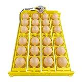 Plateau d'oeufs entièrement automatique, plateau de retournement automatique d'oeufs pouvant contenir 24 oeufs, plateau d'incubateur d'oeufs à rouleaux pour l'éclosion d'oiseaux de caille de canard