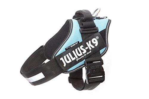Julius-K9 IDC Powerharness - Dog Harness (Blue Sky, Size 1)