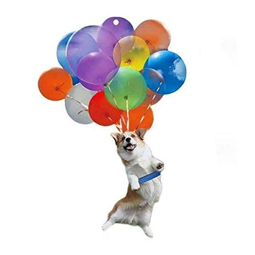 Nettes hängendes Ornament bunte Ballon hängende Dekoration Netter Hund Hängen An Bunten Ballon des Autos mit buntem hängendem Ornamentgeschenk der Luftatmosphäre Geschenk Für Hundeliebhaber