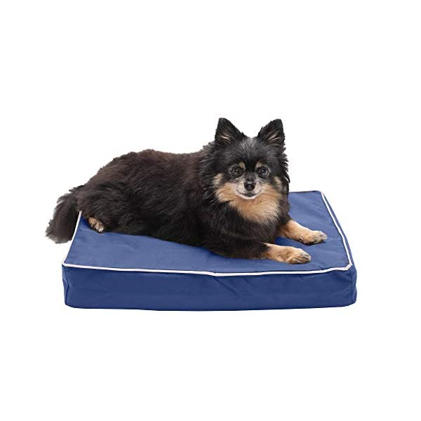 Furhaven Pet – Sofa-Style Dog Pillow Bed & Traditional Orthopedic Foam Mattress Dog Bed for Dogs & Cats – Multiple Styles, Sizes, & Colors