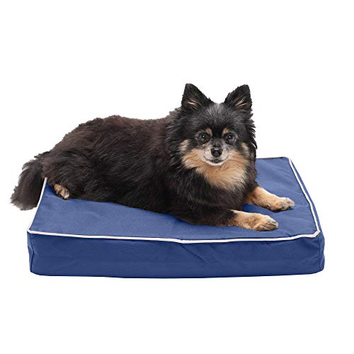 Furhaven Pet Dog Bed - Cooling Gel Memory Foam Mat Water-Resistant Indoor-Outdoor Polycanvas Traditional Foam Mattress Pet Bed with Removable Cover for Dogs and Cats, Blue with Tan Trim, Small