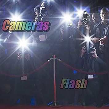 Cameras Flash