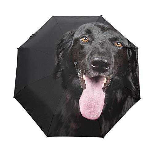 LUPINZ Schwarzer Regenschirm mit Hundemotiv, 3-Fach faltbar, kompakt, mit UV-Schutz für Erwachsene und Kinder