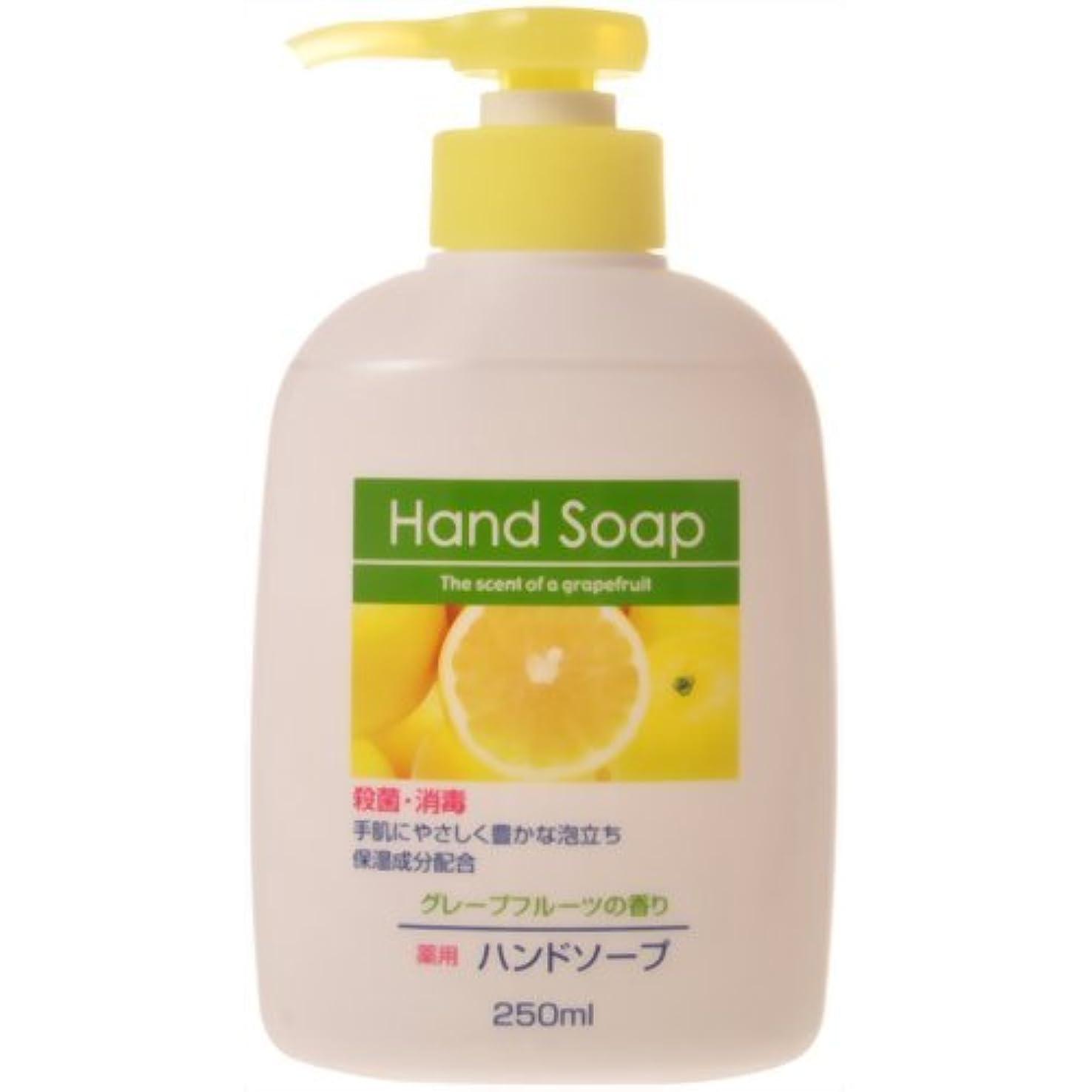 追い払う部屋を掃除する文字薬用ハンドソープ グレープフルーツの香り 本体 250ml