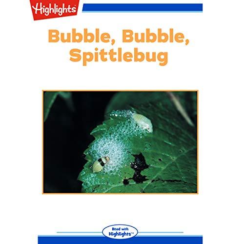 Bubble Bubble Spittlebug cover art