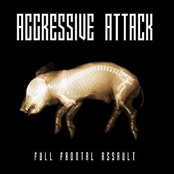 Full Frontal Assault
