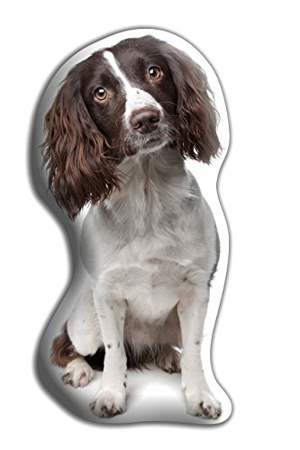 "Springer Spaniel (Liver) Dog Gift – Beautiful Large Cuddle Cushion – Luxurious strokable shaped cushions, approximate size: H460mm x W400mm (18' x 16"")"