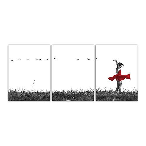 Nordic Grasland Rode Rok Dansende Vliegende Vogels Foto's Canvas Schilderij Wall Art Moderne Posters en prints Kamer Woondecoratie -50x70cmx3 stuks (geen frame)