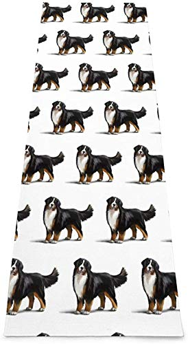 Toalla De Yoga Antideslizante,Bernese Mountain Dog Printing Eco-Friendly Fitness Exercise Mat,Tapetes De Meditación,Ejercicios De Piso Impresos &Tapete Fitness Para Mujer 183×61cm