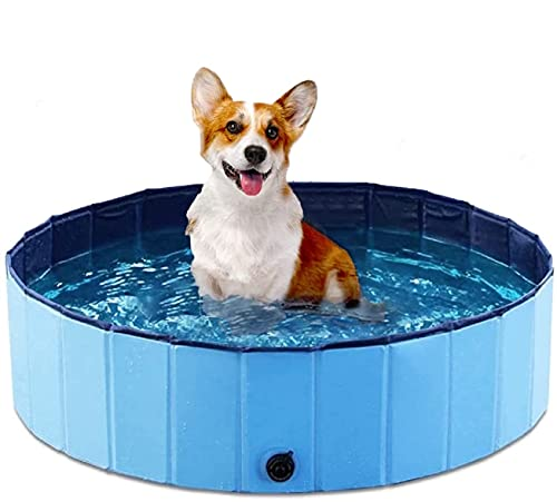 BingoPaw Hundepool für Kleine Hunde, Faltbarer Hunde Pool Katzenpool Swimmingpool Planschbecken Schwimmbad Hundebadewanne PVC-rutschfest, Verschleißfest 80cm