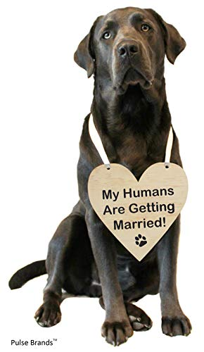 Pulse Brands Engagement Photo Prop Sign - My Humans are Getting Married - Engagement Gifts - Bride to Be - Engaged - Engagement Gifts for Couples
