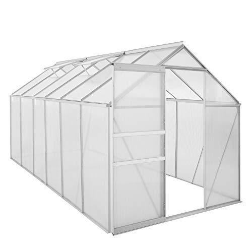 Zelsius Aluminium Gewächshaus für den Garten | 380 x 190 cm | 6 mm Platten | Vielseitig nutzbar als Treibhaus, Tomatenhaus, Frühbeet und Pflanzenhaus