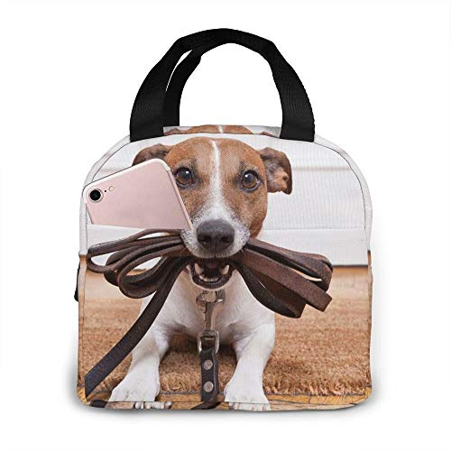 Lunch Bag Tote Bag Dogs Jack Russell Terrier Animals Lunch Box Insulated Bag Tote Bag Reusable Waterproof For MenWomen Work Travel