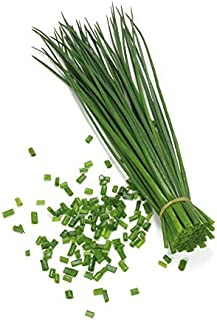 Best chive plants for sale Reviews