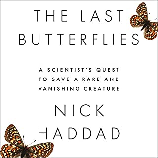 The Last Butterflies cover art