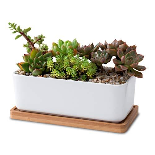Cabilock 1 juego rectangular de cerámica blanca para plantas suculentas, maceta decorativa para...