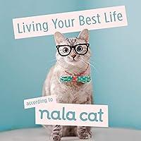 Living Your Best Life According to Nala Cat (Bala Cat)