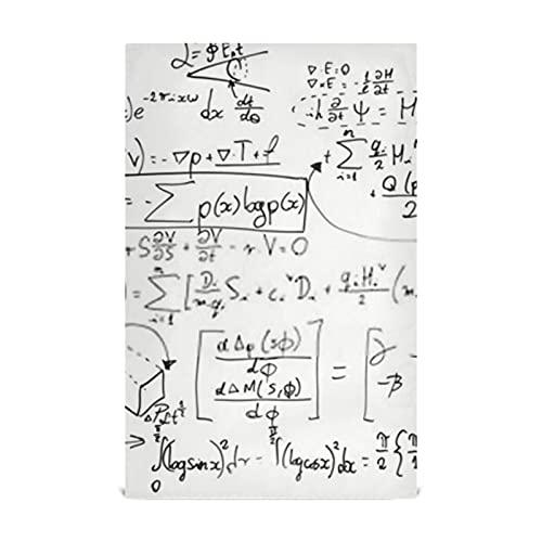 Juego de toallas de cocina para platos, 4 fórmulas matemáticas complejas en pizarra blanca, toallas de cocina grandes de 28 x 18 pulgadas, paños de cocina, toallas decorativas para gofres, toallas d