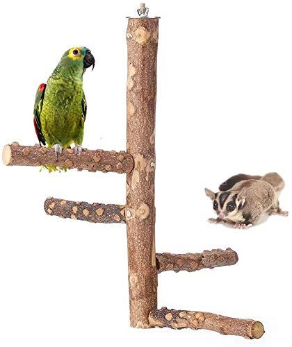 YRRC Papageien-Sitzstange Holz Natur Holz Papageien stehend Klettern Papageien Käfige Spielzeug Vogelbaum für Papageien Zucker Glider Hamster Reptil