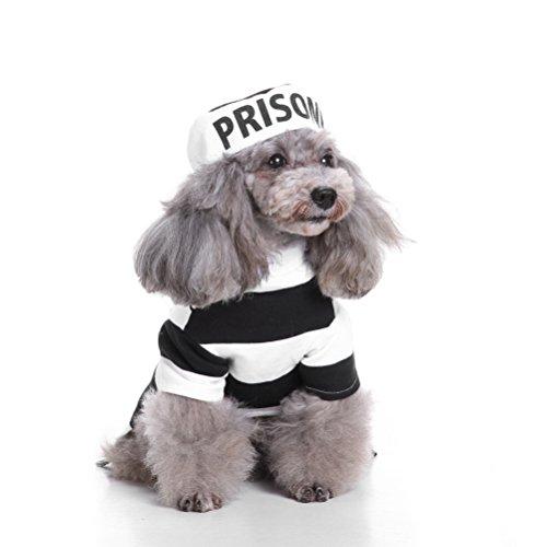 zunea Halloween kleine Hunde Katze Gefangene Kostüm mit Hut, PET Wachhund, Hund Party Cosplay Kostüm Puppy Fancy Coat Jacke Kleidung Bekleidung