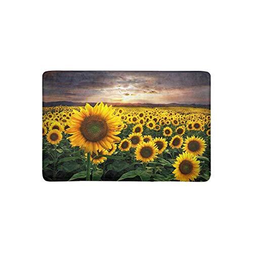 """Sunflower With Sky Bath Rugs Non-Slip Floor Outdoor Indoor Front Door Mat 16X24/"""""""