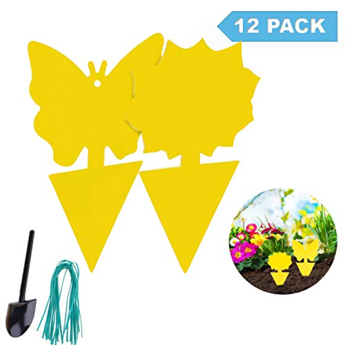 Brenda Fruit Fly Trap for Indoor/Outdoor Use,Gnat Trap Indoor,Yellow Sticky Traps(12 Pack),Fungus Gnat Killer for Indoor Plants,Gnat Killer Indoor,Insect Catcher for White Flies, Mosquitos (12 Pack)