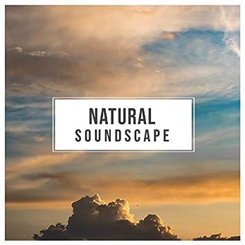 Natural Soundscape, Vol. 1