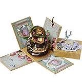hongruida Caja de música de Totoro para adultos, juguete educativo montado, regalo de cumpleaños, fantasía, bosque, caramelo, gato, caja musical hecha a mano, color (estilo 2)