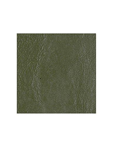 Alta Cuir - Kit coloration cuir - colorer son cuir - colorer cuir voiture - 200 ml, Vert olive