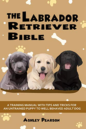 The Labrador Retriever Bible - A Beginners Training Manual With Tips and Tricks For An Untrained Puppy To Well Behaved Adult Dog