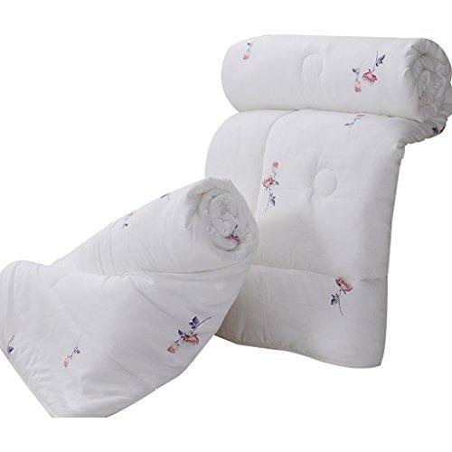 MMM Combo quatre saisons plus épais garder chaud couette hiver individuel Double couette Core Dorm Room Bedding (taille : 150 * 200cm(3.65kg))