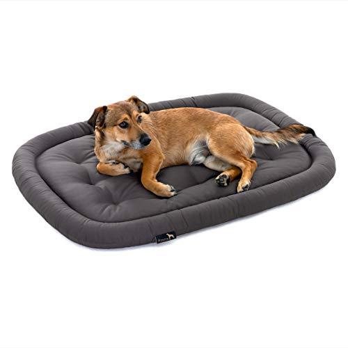 Pointer | Hundekissen waschbar, orthopädisches Hundebett für kleinere Hunde (M - 70x50 cm, Grau)