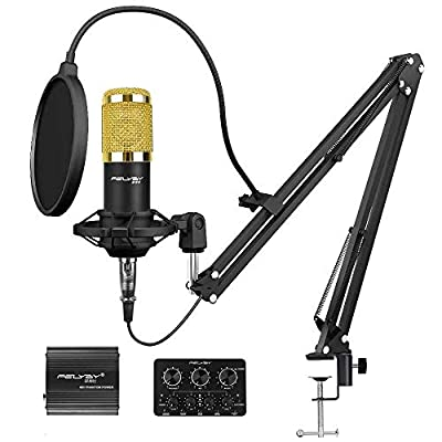 Professional Condenser Microphone Recording Mic, Cardioid Polar Pattern for Music and Video Recording, Podcast, Gaming or Chat (Black)