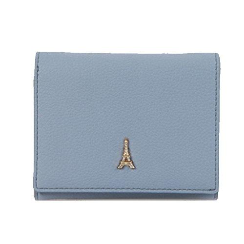 Credit Card Case Wallet Holder Purse ID Window Zipper with Women's Pouch (Sky Blue)