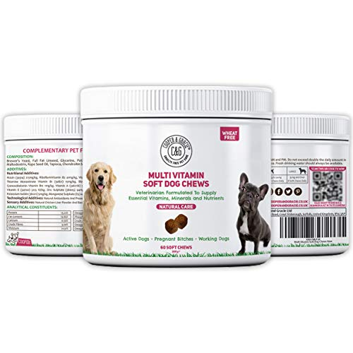 C&G Pets | MULTIVITAMIN ALL IN ONE SUPPLEMENT FOR DOGS 60 SOFT CHEWS | WHEAT FREE | ALL-NATURAL DAILY DOG VITAMINS | OPTIMUM HEALTH AND WELLBEING | VETERINARIAN FORMULATED