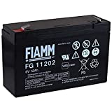 FIAMM Recambio de Batería para Moto Infantil Buggy para niños 6V 12Ah (Reemplaza también 10Ah)