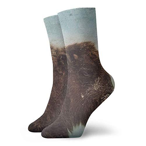 Calcetines de madera de búfalo clásico confort atlético casual calcetines 30 cm/11.8 pulgadas para unisex wen y mujeres