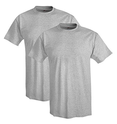 Hanes mens Adult X-Temp Unisex Performance T-Shirt(4200)-Light Steel-L-2PK