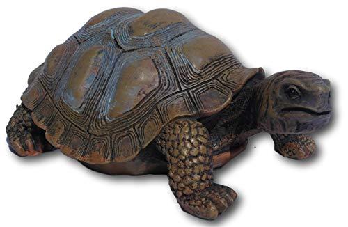 SDL Imports Garten Schildkröte Ornament