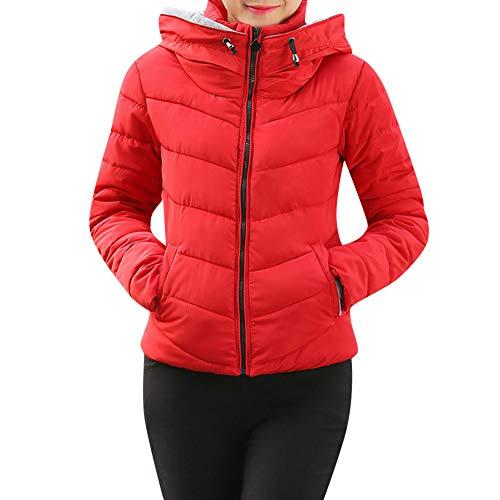 OverDose Damen Windbreaker Trenchcoat Daunenjacke Frauen Dicke Oberbekleidung Kapuzenmantel Kurze Schlanke Baumwolle gefütterte Jacken Mäntel für den Winter(Rot,34 DE/M CN)