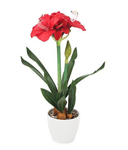 Closer 2 Nature FT033RD künstliche Blumen Künstliche Ritterstern Pflanze, 175 cm, rot