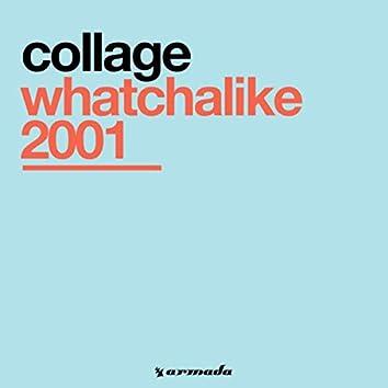 Whatchalike 2001