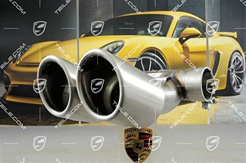 ORIG. Porsche Boxster S/Cayman S 981 Endrohr rund/Serien Auspuff/Tail pipe