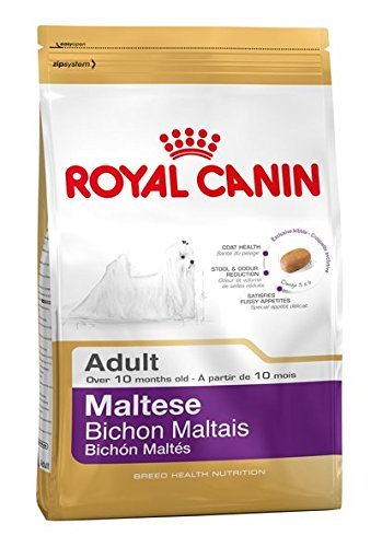 ROYAL CANIN Maltese 24 Adult 500 g, 1er Pack (1 x 500 g)
