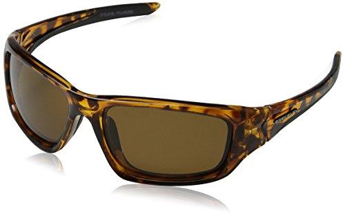Eyelevel Coastal Gafas de sol, Marrón (Brown/Brown Polarized), 60 para Hombre