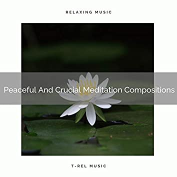 Peaceful And Crucial Meditation Compositions
